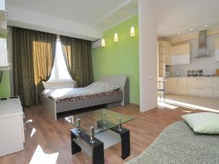 Perfect apartment in the very center Stefan 3 - Chisinau vacation rentals