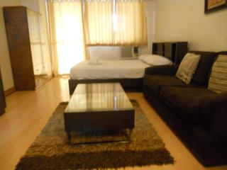 Apartment Beside Greenbelt Mall - Makati vacation rentals