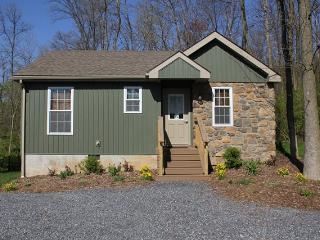 Refreshing Mountain Cabin 30 - Reading vacation rentals