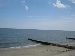 The Preserve - Ultimate Chesapeake Bay Experience! - Irvington vacation rentals