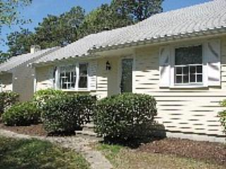 Outside View of House - Beautiful Home - Great Price, Wi Fi, Flat Screen - Yarmouth - rentals