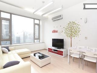 Gangnam Comfortable Duplex @ gangnam stn. - Seoul vacation rentals