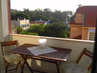Perfect spot for seeing Lisbon and enjoy its coast - Oeiras vacation rentals