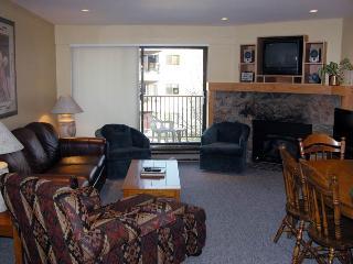 BC West O-3 w/ FREE Skier Shuttle - Avon vacation rentals