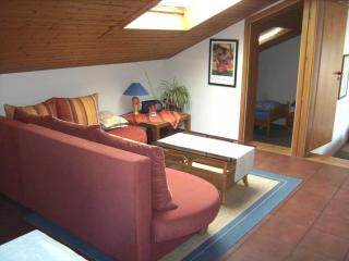 Comfortable Condo with Internet Access and Garden - Zell (Mosel) vacation rentals