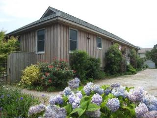 SV24: Cabana Three - Ocracoke vacation rentals