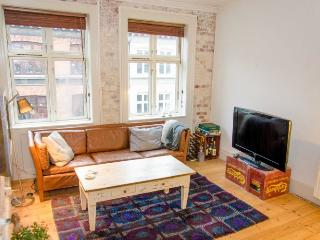 Bright and nice Copenhagen apartment at Nordhavn - Copenhagen vacation rentals