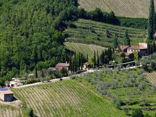 Gaiole-Apartment Vento - Gaiole in Chianti vacation rentals