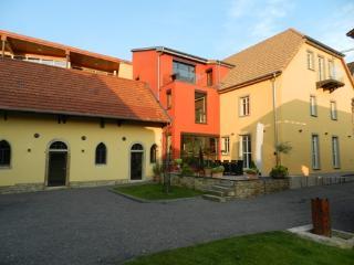 Vacation Apartment in Bornheim (Rheinhessen) - bright, quiet, comfortable (# 4800) - Lonsheim vacation rentals