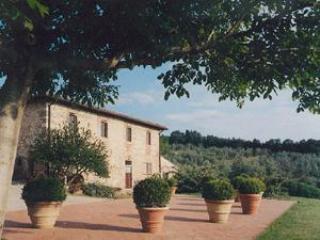 foto2 - Apartment Salvia - Rignano sull'Arno - rentals