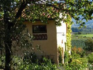 main - Apartment Colin - Rignano sull'Arno - rentals