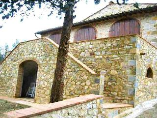 Villa Fiordaliso - Castellina In Chianti vacation rentals