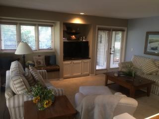 BEAUTIFUL HOME with PRIVATE LAGOON,AMAZING Views,4 - Hilton Head vacation rentals