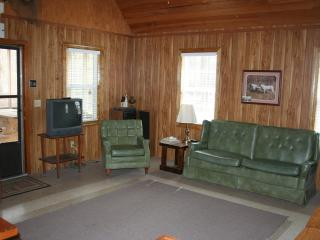 South Carolina Lowcountry River Cabin - Gresham vacation rentals