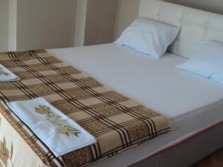 Big apartment with excellent location in Istanbul Fatih - Istanbul vacation rentals