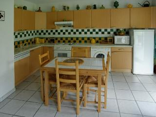 Pyrénees : Beautiful 2 bedrooms duplex center of c - Loudenvielle vacation rentals