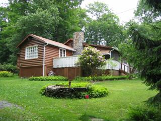 Smallwood Cabin, Lake Access, near Bethel Woods - Narrowsburg vacation rentals