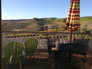 Ridges Townhouse. Great Biking, Hiking and VIEWS - Grand Junction vacation rentals