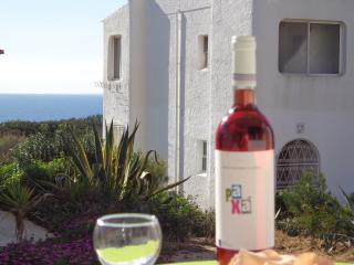 Amazing apartment wiht the sea view-D - Carvoeiro vacation rentals