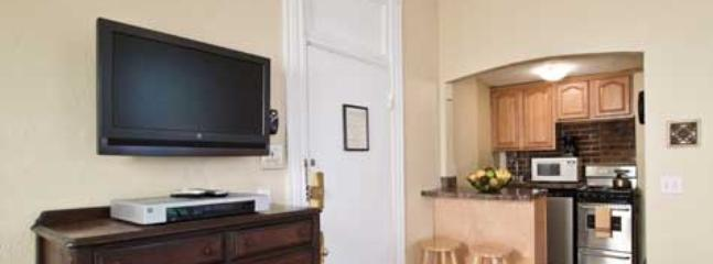 New Heart of Newbury Back Bay Boston Studio Apt - Image 1 - Boston - rentals