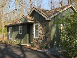 Refreshing Mountain Cabin 22 - Reading vacation rentals