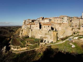grande antica villa in maremma - Farnese vacation rentals
