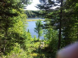 view of lake and loon island from deck - Loon Island Lookout Minnesota Cabin - Outing - rentals