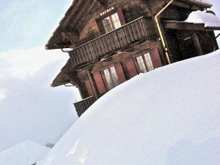 Charming Chalet in the Swiss Alps Grächen - Grächen vacation rentals