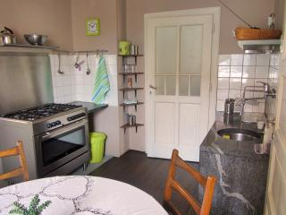 Dunajska Bright Apartment with garden and parking - Ljubljana vacation rentals
