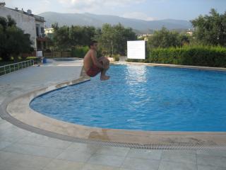 By The Egean Sea,pri̇vate Beach,ni̇ce Furni̇tures, Swi̇mmi̇ngpool,rent For Mountly - Edremit vacation rentals