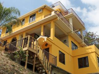 Luxury 7 Bedroom Oceanview Villa - Rincon vacation rentals