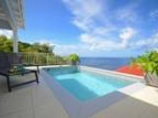 Villa Gros Islets - Image 1 - Saint Barthelemy - rentals