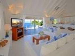 Villa Royal Palm - Image 1 - Saint Barthelemy - rentals