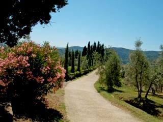 Vacation apartment & pool in Tuscany, Chianti - Montegonzi vacation rentals