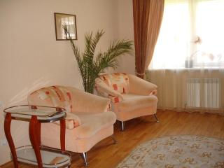 Studio apartment. - Russia vacation rentals