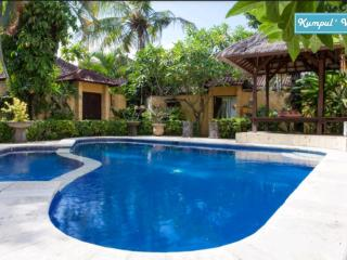 Budget Villa 3 Bedrooms Legian - Legian vacation rentals