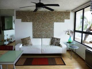 Charming Apartment in Paitilla - Panama City vacation rentals