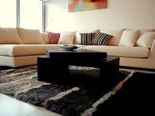 Beautiful Apartment with Internet Access and Fitness Room - Panama City vacation rentals