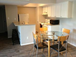 (A) Downtown Private Apartment Steps to downtown! - Austin vacation rentals