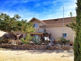 The Cactus Patch: Your home away from home - Twentynine Palms vacation rentals