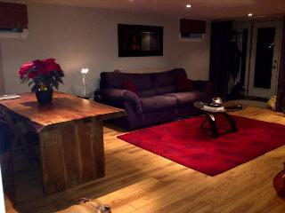 Bright and Airy 2 Bedroom Apartment - Toronto vacation rentals