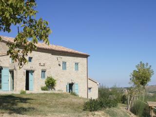 BIO Fattoria Fontegeloni, LA CICALA E LA FORMICA, 42 mt apart. - Serra San Quirico vacation rentals