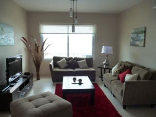 Exclusive 1 Bedroom Apartment - Panama City vacation rentals