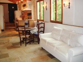 LANGUEDOC the NEW PROVENCE - Saint-Jean-de-Bueges vacation rentals