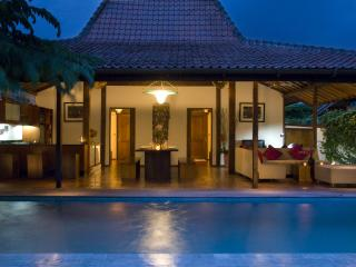 Villa Louise - Seminyak vacation rentals