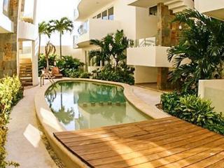 Mamitas Village #305 - Penthouse Mamitas - Playa del Carmen vacation rentals