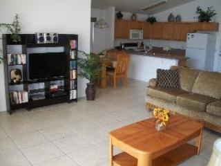 Handicap Accessible 4 Bedroom 3 Bathroom Pool Home. 127WPL - Image 1 - Orlando - rentals