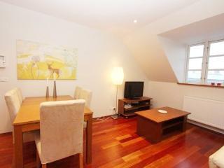 Spacious Apartment Close to City Center - 192 - Copenhagen vacation rentals