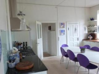 Large Apartment in Frederiksberg's Main Shopping Street - 5474 - Copenhagen vacation rentals
