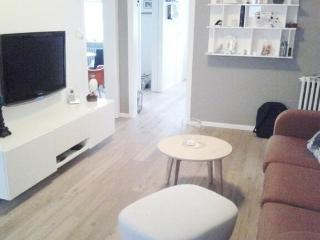 Newly Renovated Apartment in Central Reykjavik - Alftanes vacation rentals